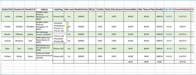 Creating drop-down lists and other functions in MS Excel
